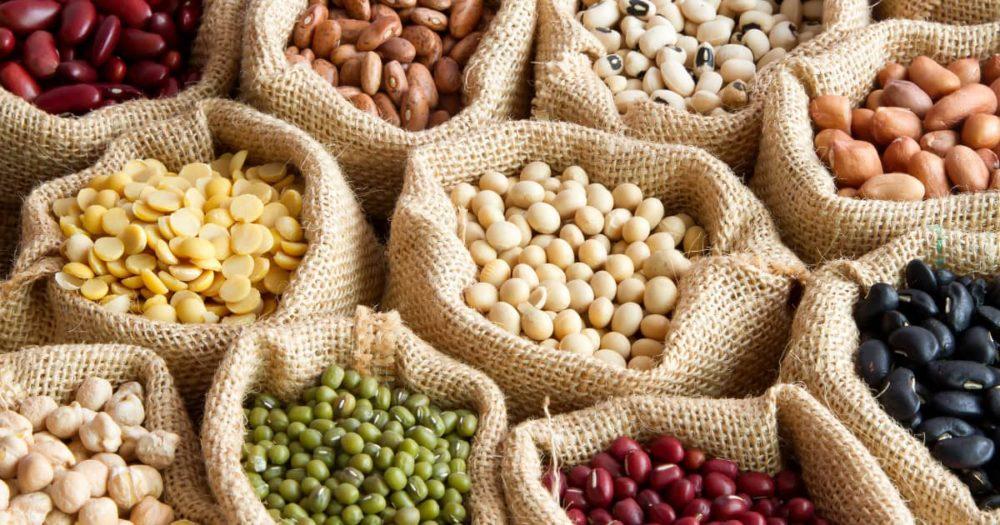 Les légumineuses, une source de protéines
