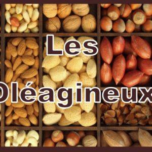 Les graines et les fruits oléagineux