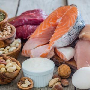Le rôle principal des protéines