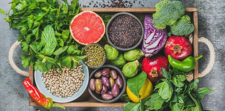 Le régime végétarien : Bon ou mauvais ?